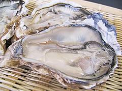 旨みがちがう!岩牡蠣(夏牡蠣)