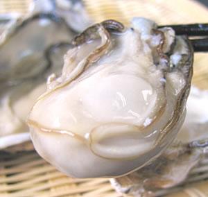 カキえもん~カキ(牡蠣)の名産地・厚岸