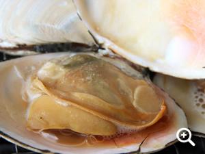 白貝の貝焼き
