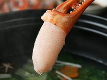 紅ずわいがにの蟹ツメ
