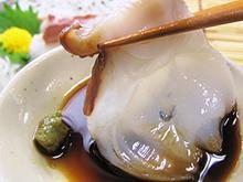 北海道産お刺身用水タコ