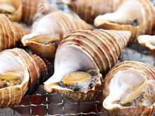 厚岸中嶋孝志さんのむき牡蠣