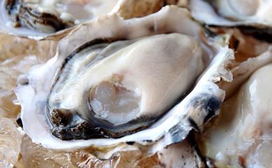寺澤さんの特大殻付牡蠣