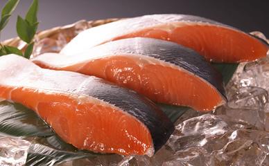 北海道産「活〆時鮭」
