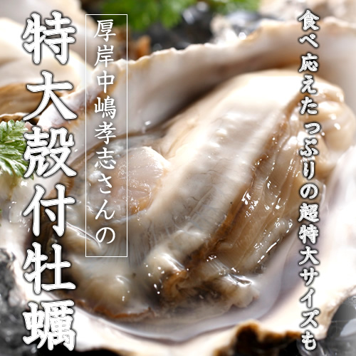 中嶋孝志さんの殻付牡蠣