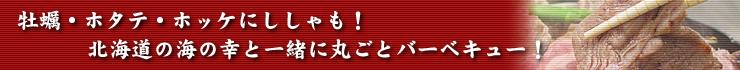 牡蠣・ホタテ・ホッケにししゃも!北海道の海の幸と一緒に丸ごとバーベキュー!