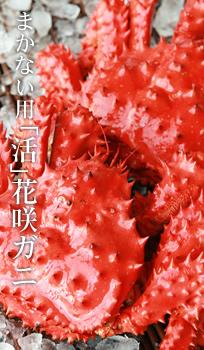 花咲ガニのご感想